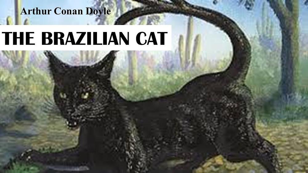Uma cena de selva com um puma preto sentado virado para o leitor. O nome do autor Arthur Conan Doyle está escrito no canto superior esquerdo e abaixo dele está escrito The Brazilian Cat.