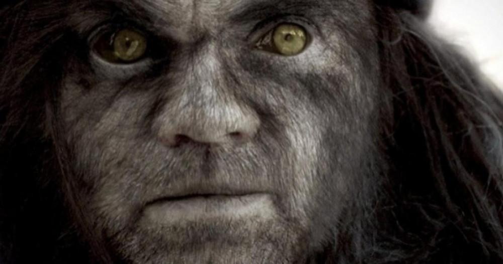 O rosto do Lobo em tela cheia. Visão apenas do queixo para a testa. Olhos amarelos e rosto coberto de pêlos.