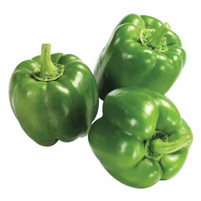 Pimentão Verde - kg