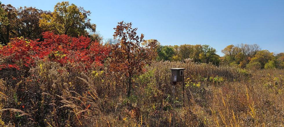 Trail.Pic. BowenPk.agr.jpg