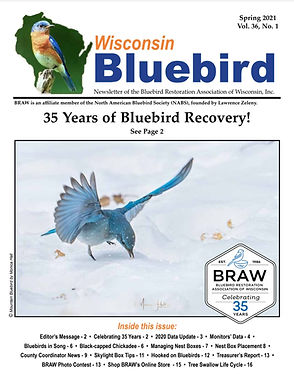 Front Cover WB.SPRG.21.jpg