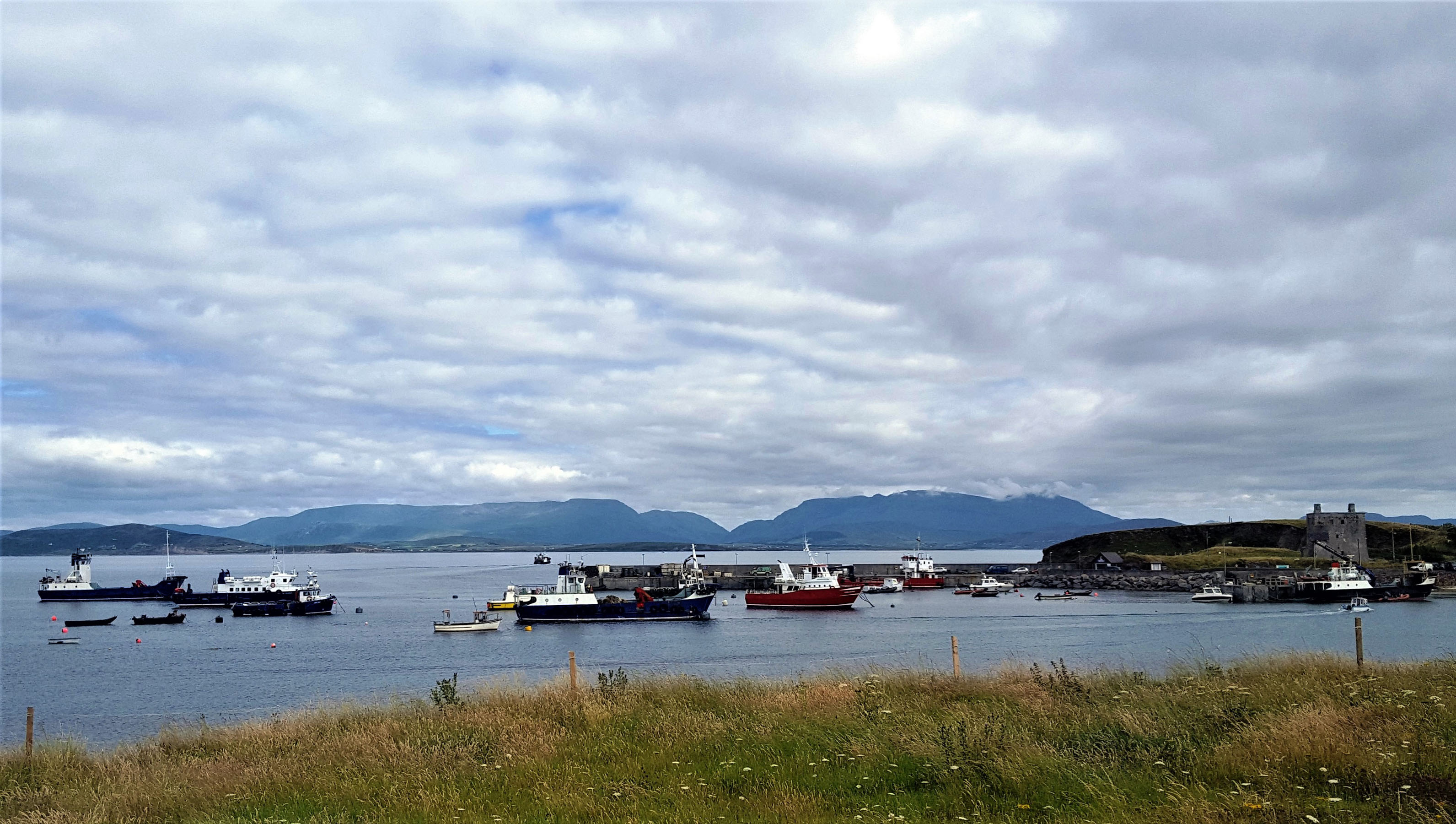 Eigg, Bruernish, Clew Bay Queen (ex Kilbrannan) and Raasay at Clare Island (Mark Wemyss)