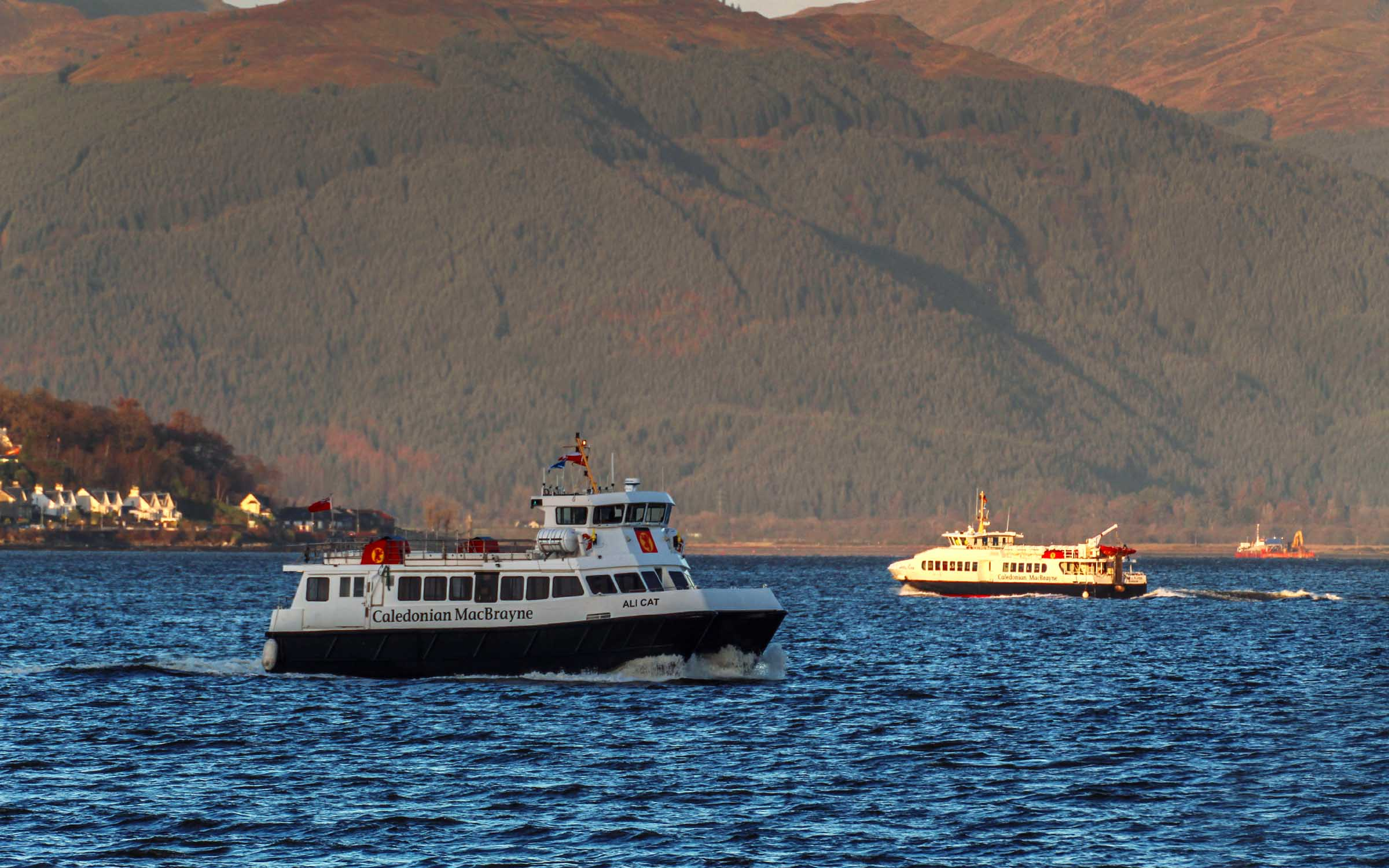 Argyll Flyer and Ali Cat cross in 2020 (Ships of CalMac)