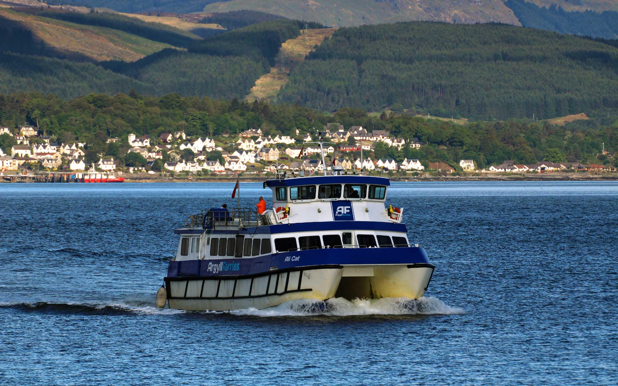 Ali Cat in Argyll Ferries colours