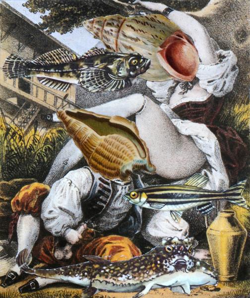 MOLLUSC LUST: THE SWISS | 2014