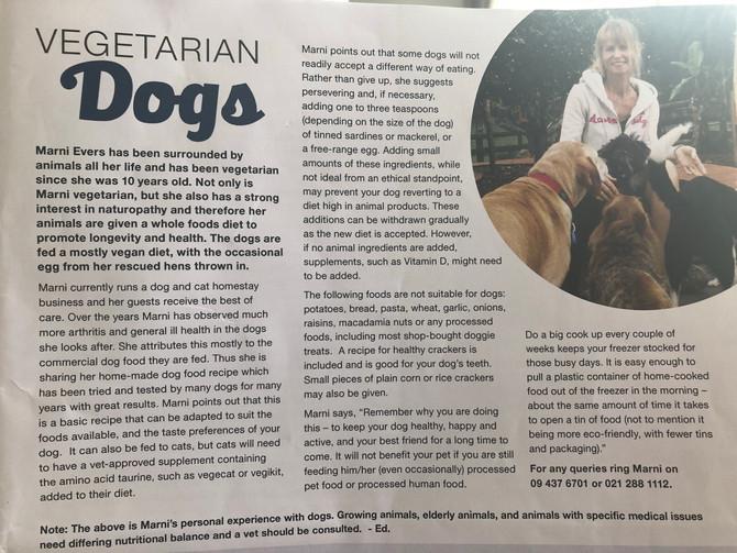 We made it to the vegan magazine !