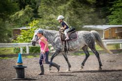 Horse Riding Whangarei