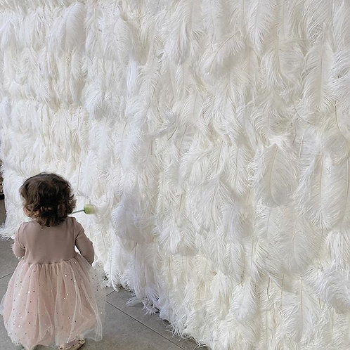 Ivory Feather Wall