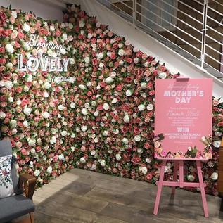 • R O S I E • FlowerWall.....jpe