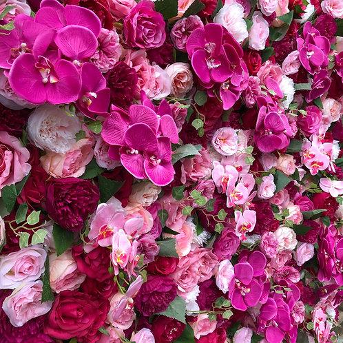 petra flowerwall petra flower wall pink flowerwall fuschia flowerwall hertfordshire flowerwall, orchid wall, bright flowers