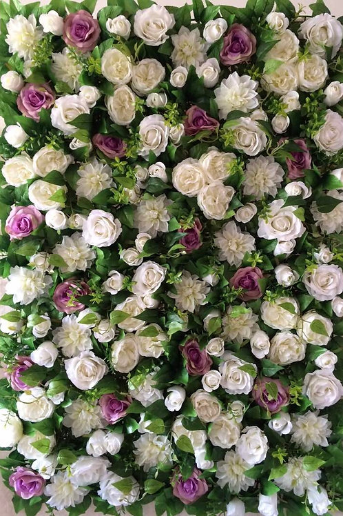 Ivory David Austin Rose flower wall, Plum Purple Rose flower wall