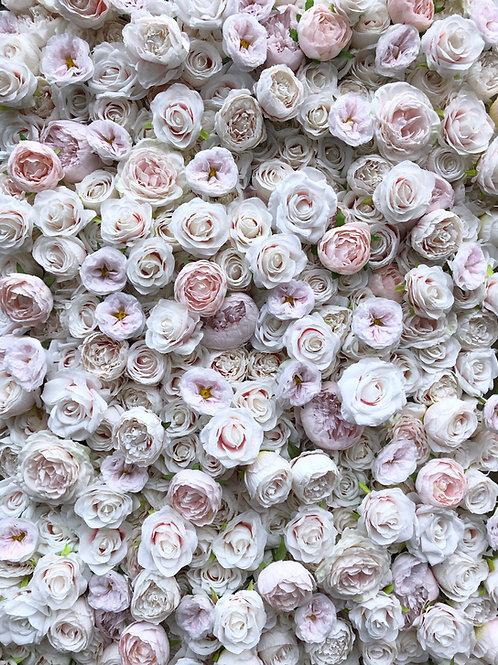 white flowerwall white flower wall pale flowerwall pale flower wall rose flowerwall