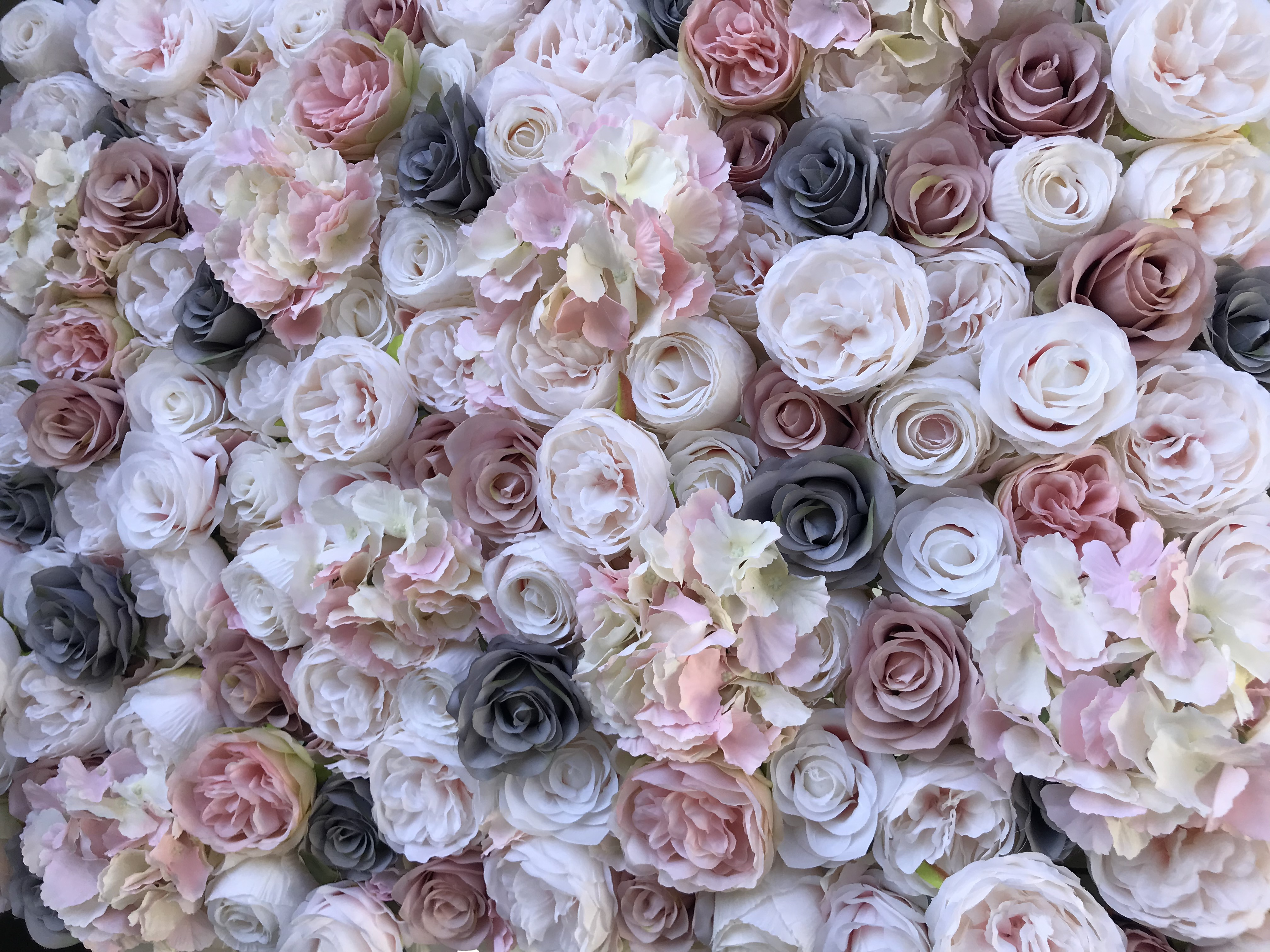 5ee2c42bac56 Buy or Hire Flower Walls