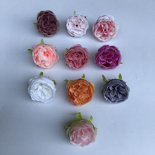 David Austin Rose FlowerHeads