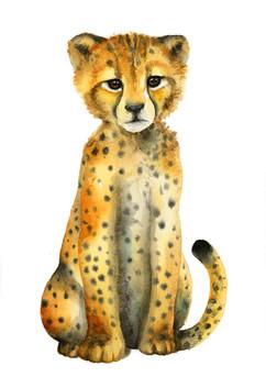 Watercolor cheetah, Karolina Kijak H&M