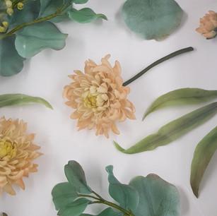 Peach chrysanthemum and eucalyptus