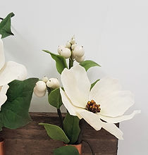 White cosmos flower and snowberries