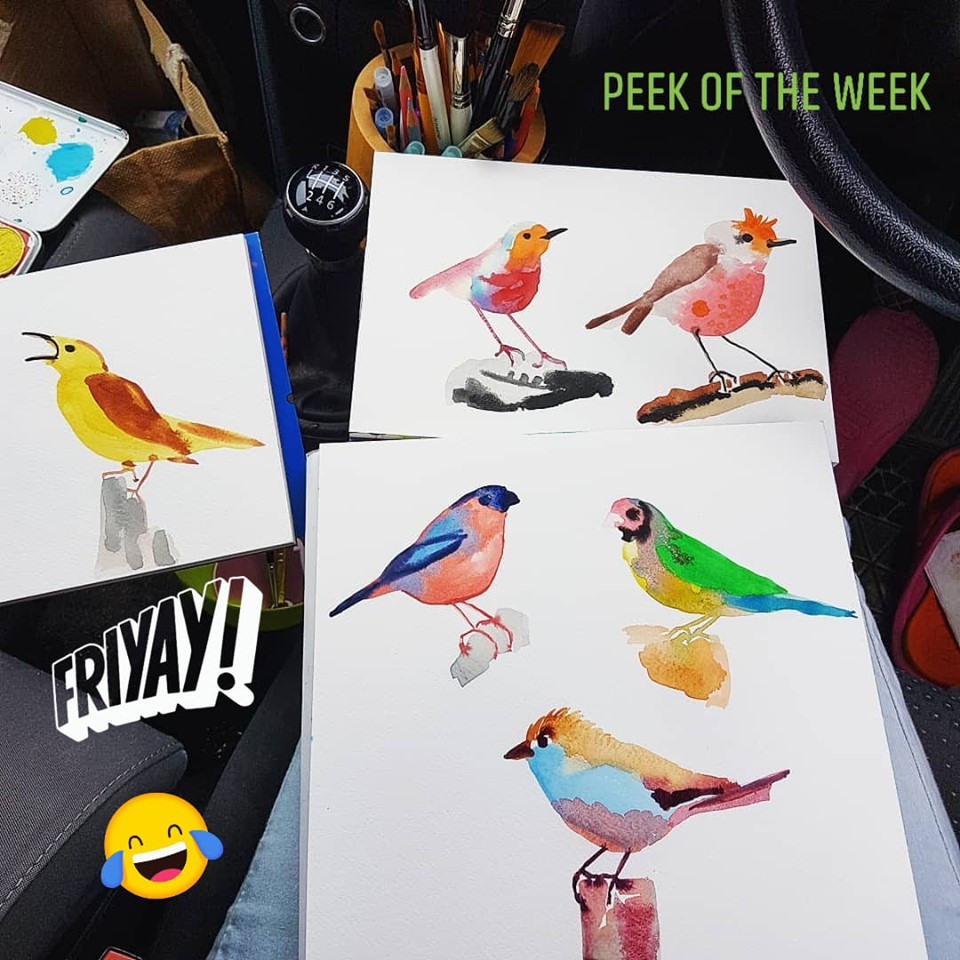 Peek of the week - watercolour birds