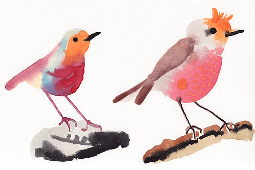 Robins Original Watercolour Painting on Paper by Suzie Cumming