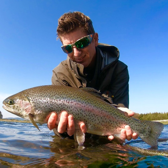 Rainbow Trout - Scottish Loch