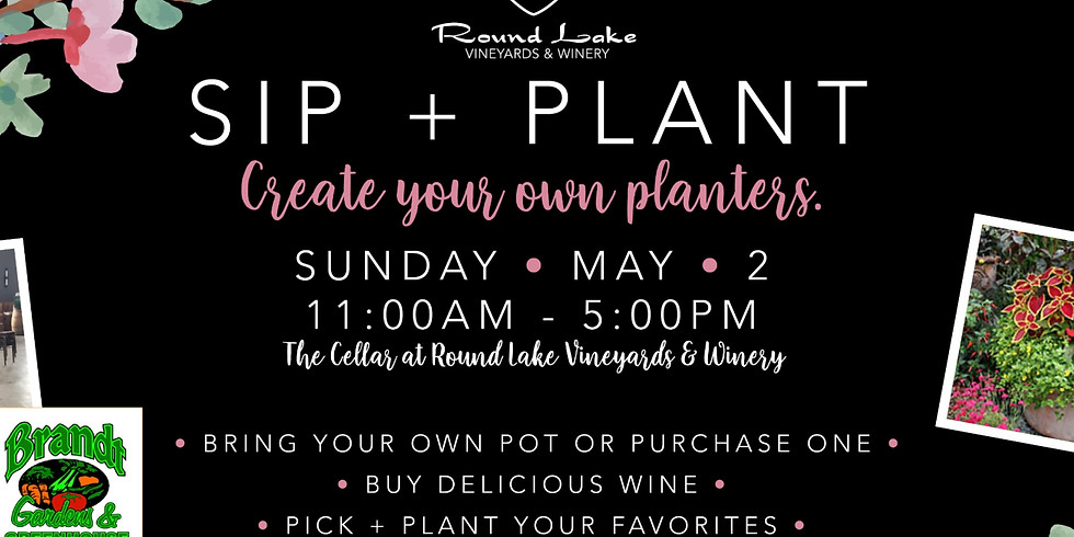 Sip + Plant with Brandt Gardens & Greenhouse