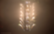 螢幕快照 2019-03-27 下午5.57.23.png