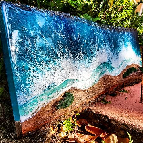 3D Live Edge Rocky Beach Ocean