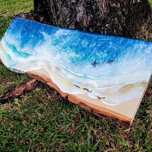 Shark Beach Live Edge Wood Slab Ocean 36x10.5