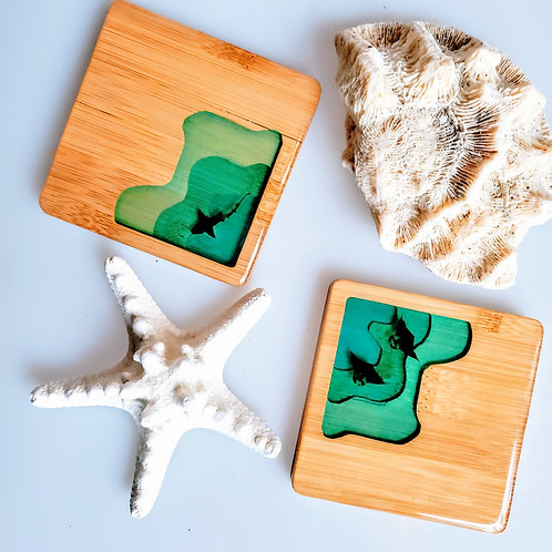 Manta and Shark Cove Square Coasters Set of 2
