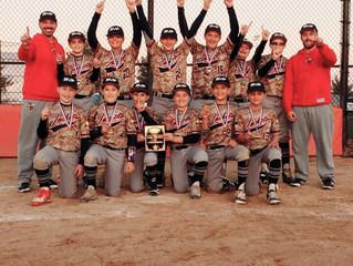 MVP Blue Jackets 11/12u, Men on a Mission!