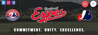 Expos Banner.jpg