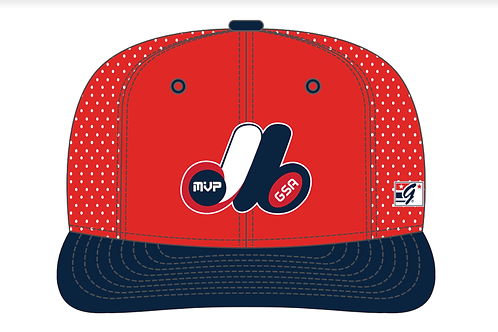 (On-Field) The Game - Team Hat