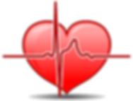 Birman Health Foundation, Cardiomyopathy Problem in Birman cats
