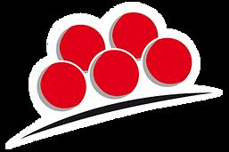 logo-bollenhut.png