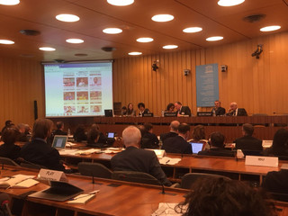 The TF features in UNESCO's CIGEPS Meeting in Paris