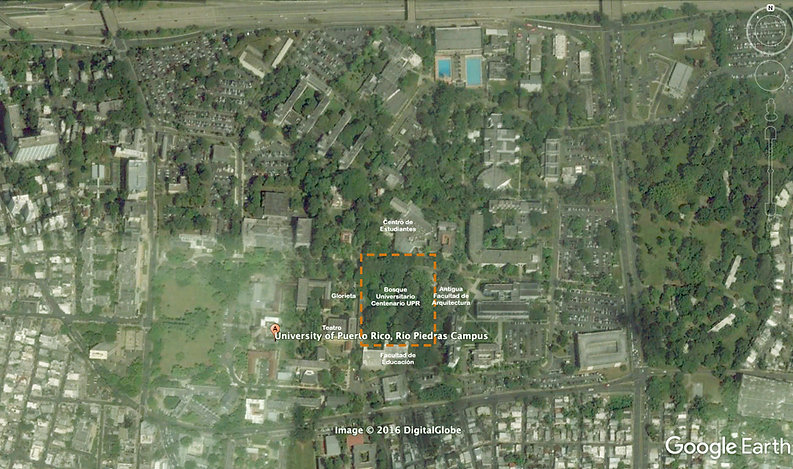 Google Bosque Universitario.jpg