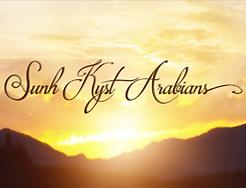 SunhKystArabians.png