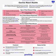 Canine Heart Health