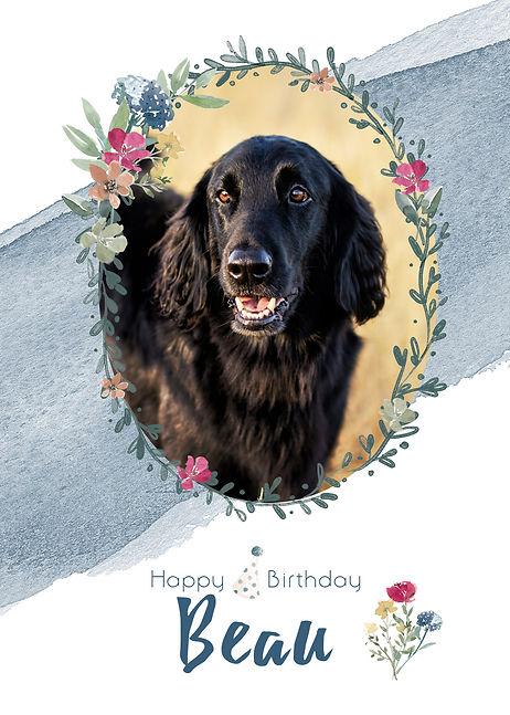 BirthdayBeau.jpg