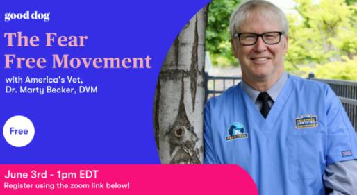 Webinar Invite: Fear Free Movement