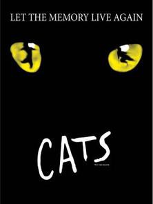 1 Cats.jpg