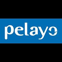 logo-sin-aspas-ply_vectorial.png