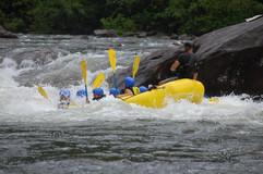 Enjoy rafting in Kutaisi, Racha, or Borjomi!