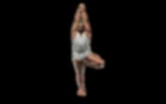 Professeur agrée de Yoga Iyengar à Fosses - Puiseux en France - Luzarches