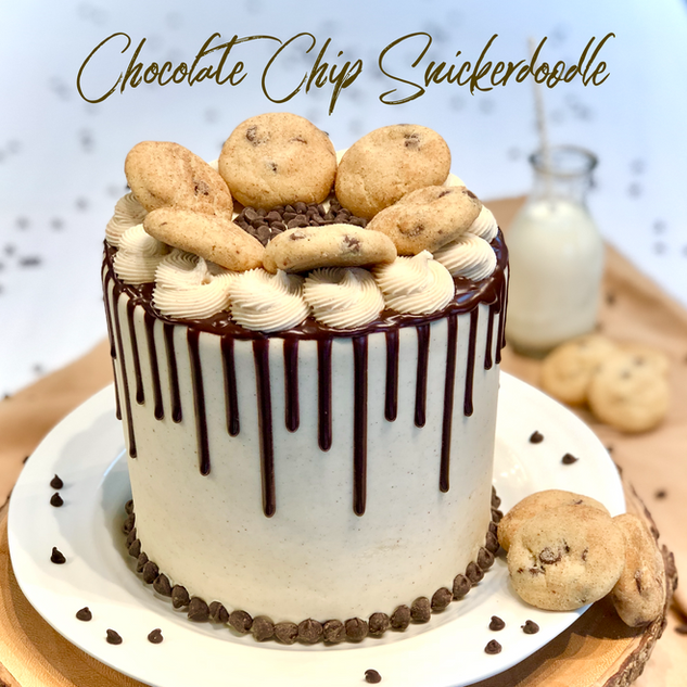 Chocolate Chip Snickerdoodle