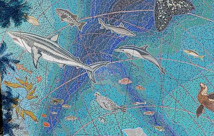 Sea life at the Munk Foundation