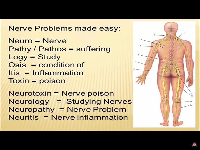 Neuropathy.png