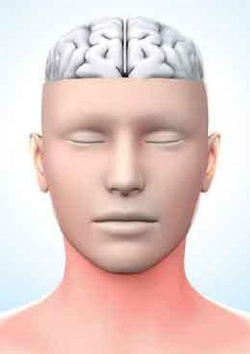 neuropathybrainpain.jpg