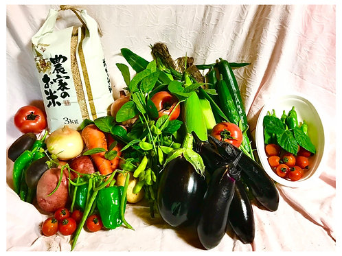 【狸穴ファーム】寺田さん家のつくばみらい夏野菜セット+玄米3kg