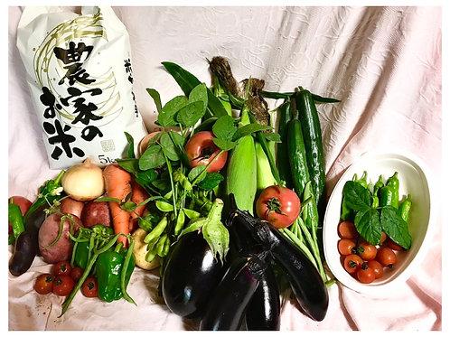 【狸穴ファーム】寺田さん家のつくばみらい夏野菜セット+玄米5kg